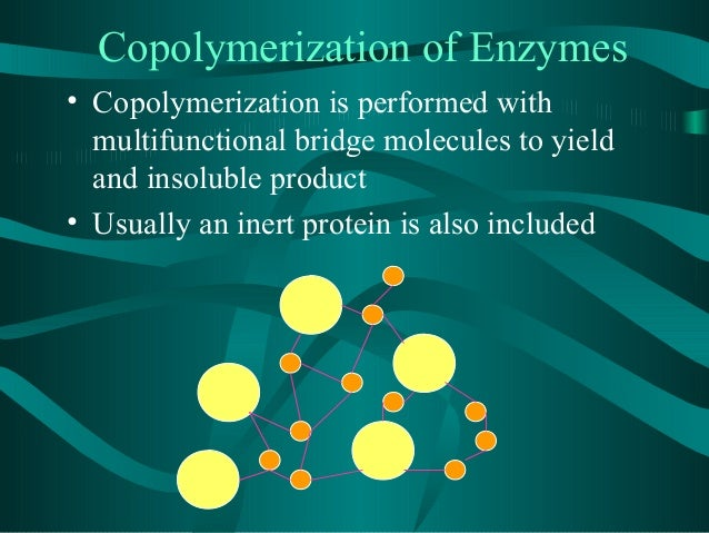 immobilized enzymes coursework Immobilize enzyme reactors uploaded by at the surface of the immobilized enzyme 1702 sites immobilized on the surface of the rotating reactor002 0 of course.