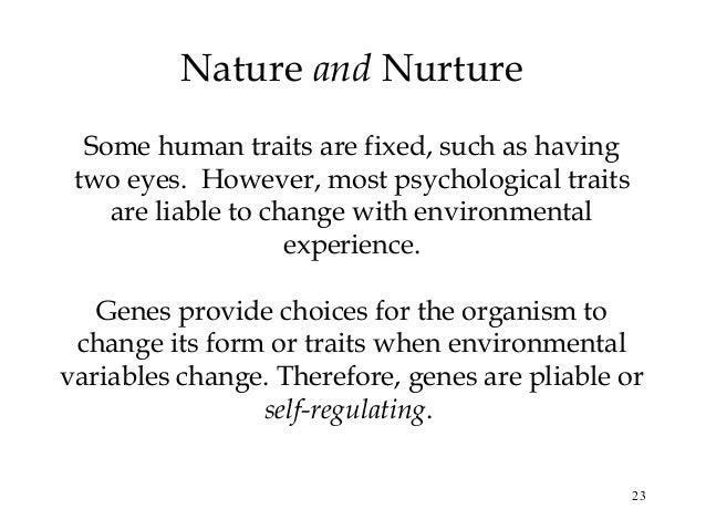 AP Pysch Ch. 3: Nature, Nurture, and Human Diversity Flashcards