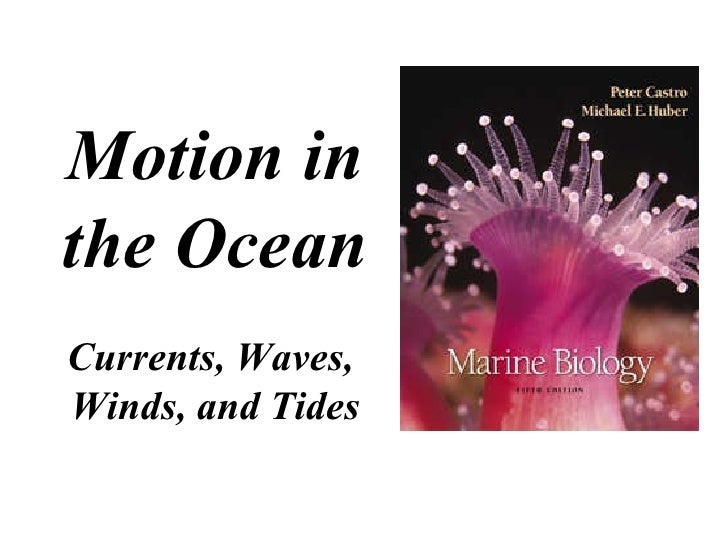 Motion in the Ocean Currents, Waves,  Winds, and Tides
