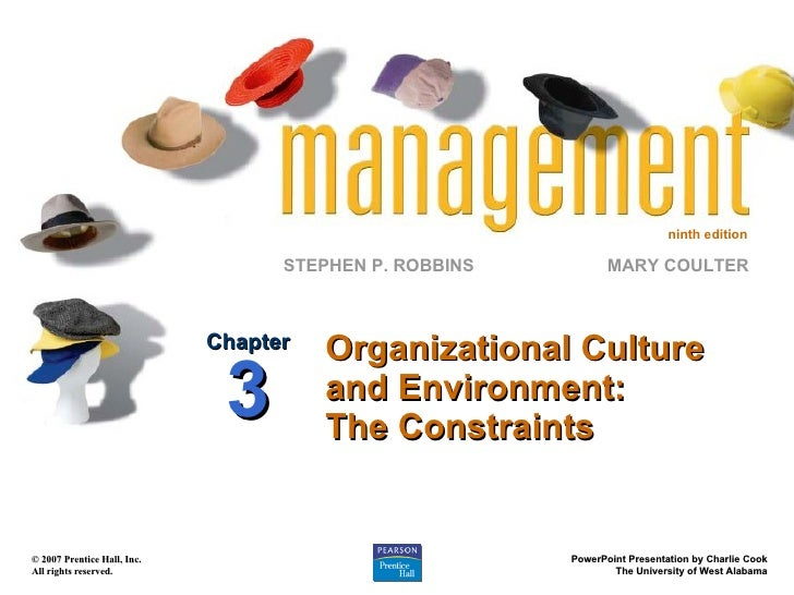 Organizational Culture and Environment: The Constraints Chapter 3