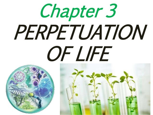 Chapter 3 PERPETUATION OF LIFE