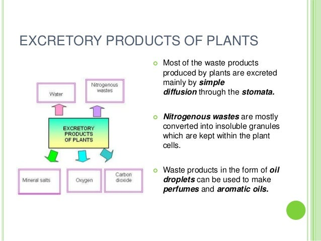 Pmr form 3 science chapter 3 plant excretion for Waste material to useful products