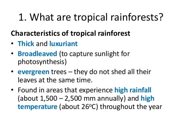 Sec 1 Chapter 3 Tropical Rainforests