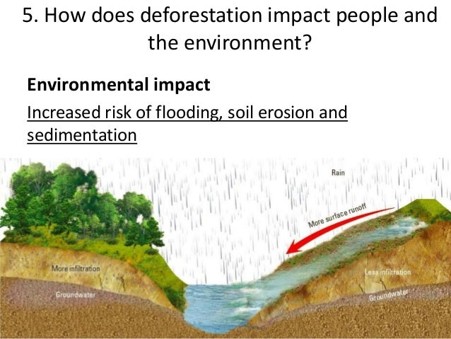 the significant effects of soil erosion on the environment Soil erosion and sediment pollution although sediment is a part of the natural  environment, human activities  excess eroded sediment degrades habitat   this affects fish feeding and schooling practices, and can lead to reduced  survival  the amount of land disturbed can significantly reduce the amount of  erosion, and.