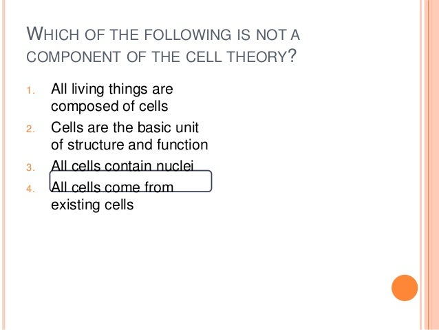 Chapter 3 - Anatomy Review Questions
