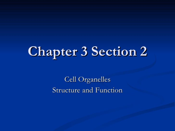 Chapter 3 Section 2 Cell Organelles Structure and Function
