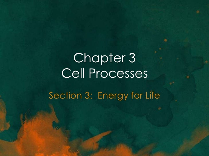 Chapter 3  Cell ProcessesSection 3: Energy for Life