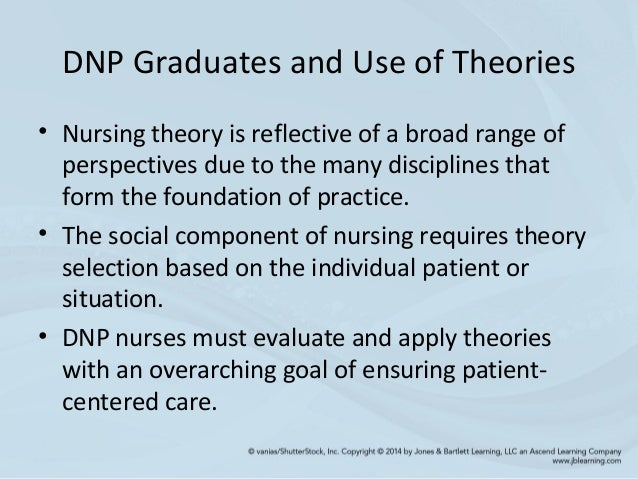 chapter 3 the essentials of the doctor of nursing practice