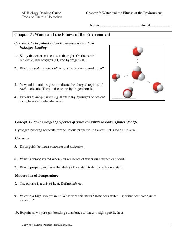 chapter 3 water and the fitness of the environment rh slideshare net Biology Workbook Chapter 13 3 Answer Key Holt Biology Study Guide