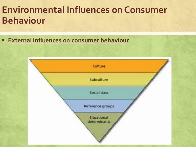 social influence on consumer behaviour