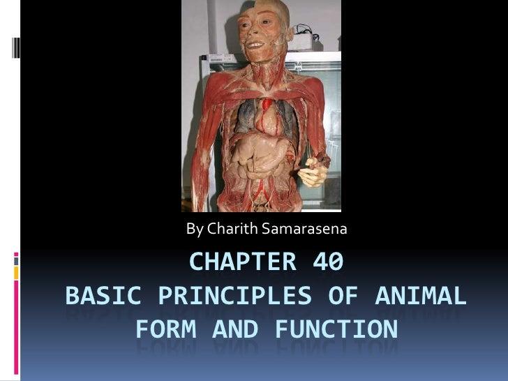 Chapter 40Basic principles of animal form and function <br />By Charith Samarasena<br />
