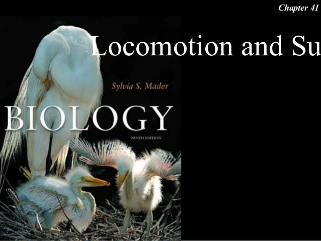 Locomotion and SuChapter 41