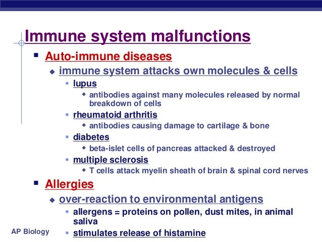 ap bio essay immune system Ap biology reading questions: cells, lesson 2- energy how do the cells of our immune system know if a particular lesson 1- overview and endomembrane system.