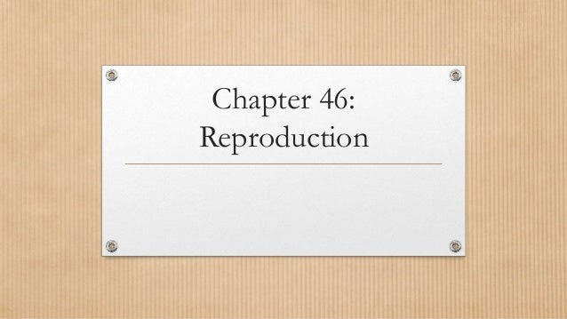 Chapter 46: Reproduction