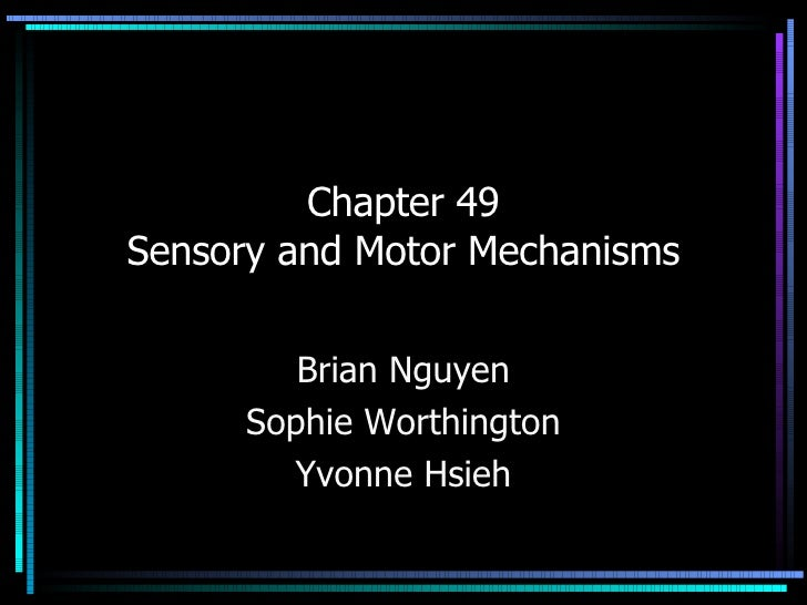 Chapter 49 Sensory and Motor Mechanisms Brian Nguyen Sophie Worthington Yvonne Hsieh