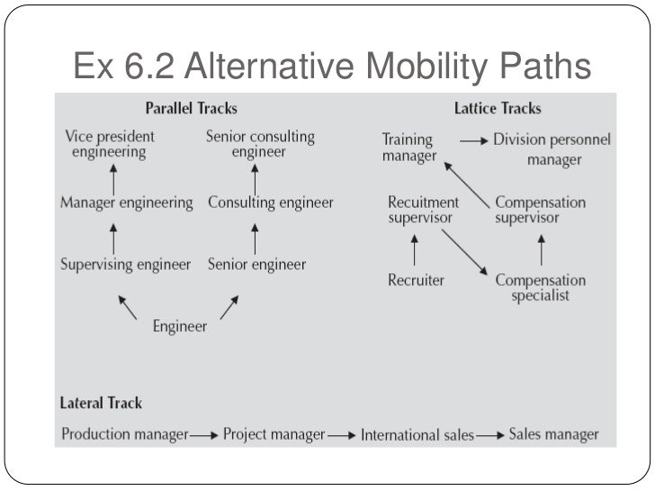 career paths with hierarchical and alternative mobility From vertical to liquid career paths ground over hierarchical organizations as an alternative hris hr management hr manager hr mobility hr predictive.