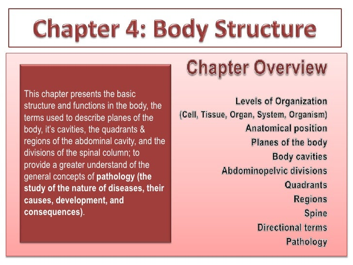 Chapter 4: Body Structure<br />Chapter Overview<br />Levels of Organization<br />		(Cell, Tissue, Organ, System, Organism)...
