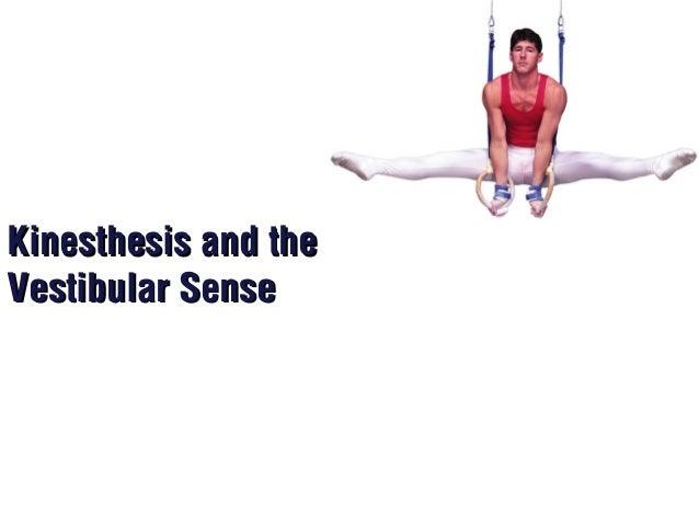 And kinesthesis