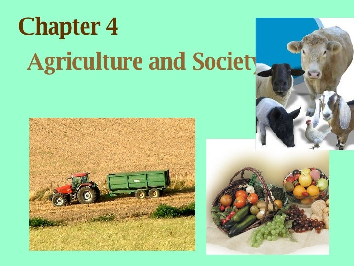 Chapter 4 Agriculture and Society