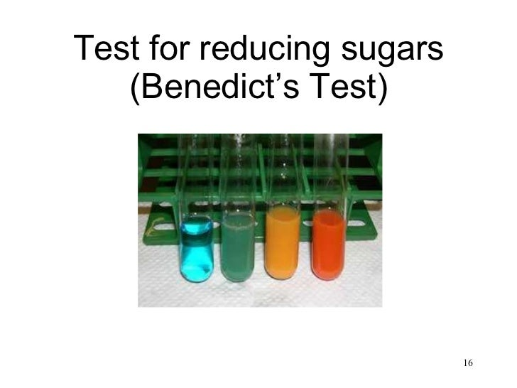 1 find amount reducing sugars and starch yelloe and green The glucose reduced and food grade starch stabilized particles remained   nanomaterials find applications in the areas of electronics, specialty  at  concentrations higher than 0012 mol l−1, the amount of starch  microwave- assisted green synthesis of silver nanoparticles using orange peel extract.