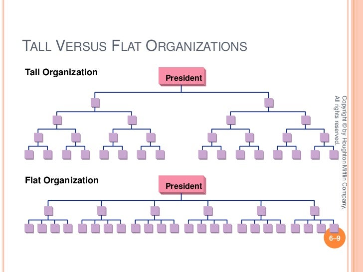 differences between horizontal vertical organizations
