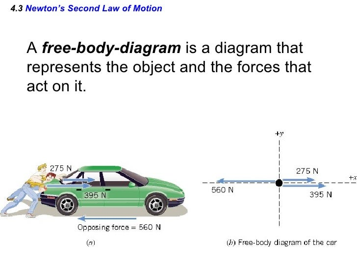 Newtons laws free body diagram worksheet answers