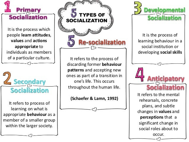 education as an agent of socialization