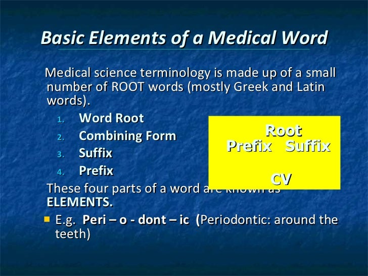 Chapter 4 terminology