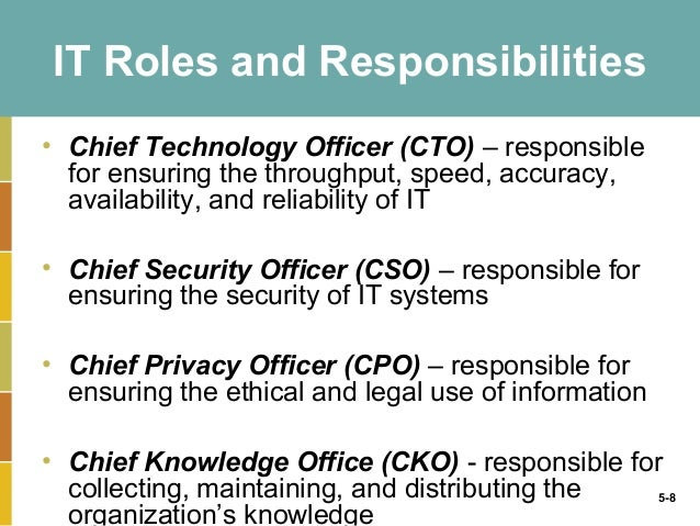 cio roles and responsibilities pdf
