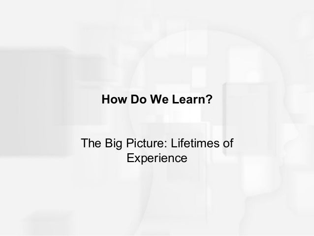 How Do We Learn?The Big Picture: Lifetimes of        Experience