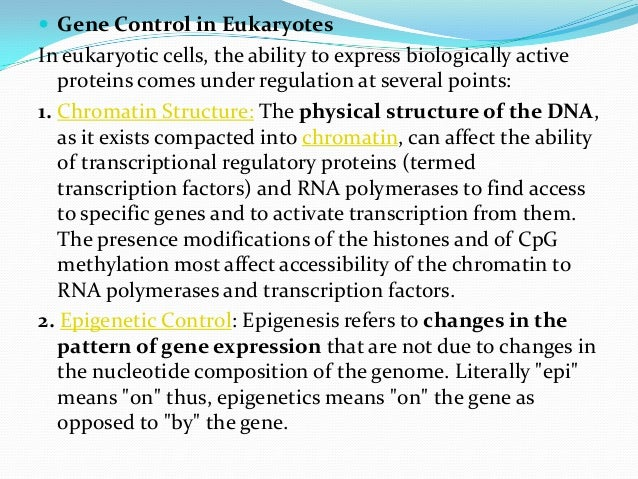  Gene Control in EukaryotesIn eukaryotic cells, the ability to express biologically active   proteins comes under regulat...