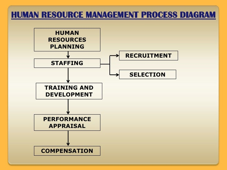 HUMAN RESOURCE MANAGEMENT PAPER WRITING HELP