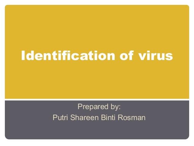 Identification of virus            Prepared by:    Putri Shareen Binti Rosman
