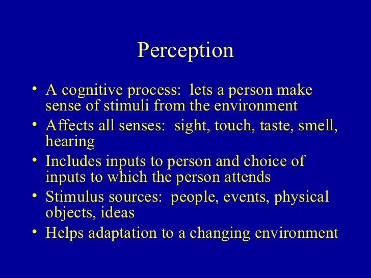Personality, Perception and Attitude Essay Sample