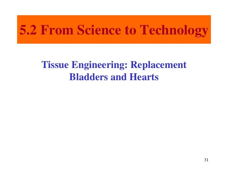 Chapter 5 Tissues 8702629 likewise Chapter 5 Tissues 8702629 additionally Diagram Of Cartilage Cell furthermore Chapter 5 Tissues 8702629 further  on chapter 5 tissues 8702629