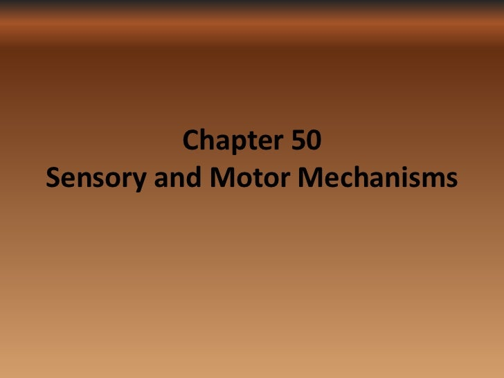 Chapter 50Sensory and Motor Mechanisms