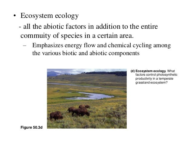 overview of ecology Description overview of the state department of ecology's 2017-2019 budget and agency priorities this document provides a sense of perspective about ecology's activities and a summary of the budget that supports those activities request a copy the mission of the department of ecology is to protect.