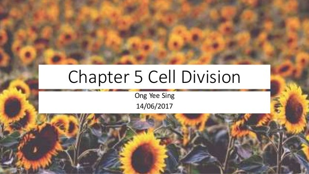 Chapter 5 cell division SPM Biology Form 4