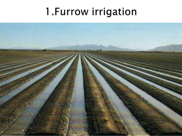 methods of irrigation Methods of irrigation irrigation water can be applied to crop lands using one of the following irrigation methods : (i)surface irrigation (a 3 slideshare uses cookies to improve functionality and performance, and to provide you with relevant advertising.