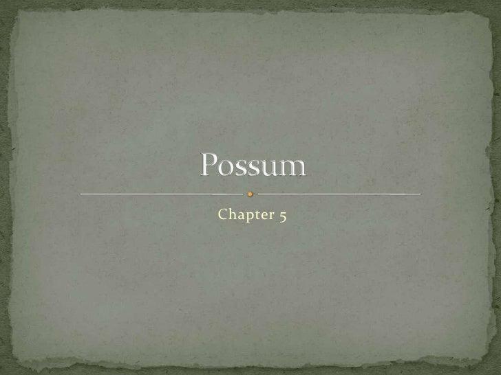 Chapter 5<br />Possum<br />