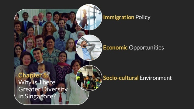 Community Support Safe Environment Singapore's Education System The following features appeal to potential immigrants