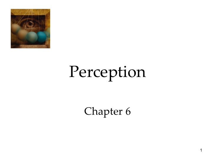 Perception Chapter 6