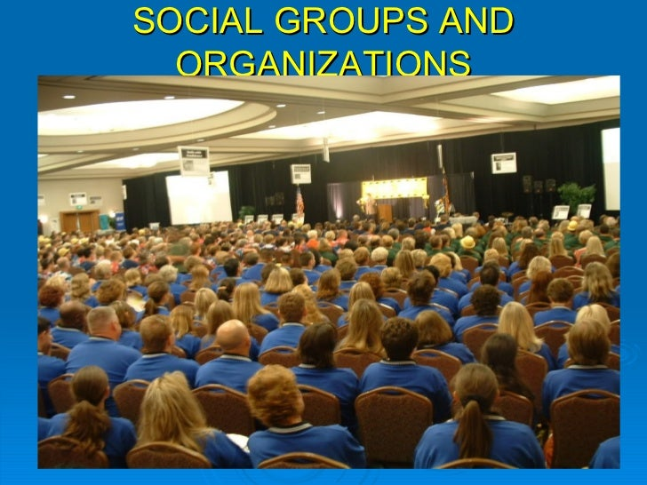 SOCIAL GROUPS AND ORGANIZATIONS