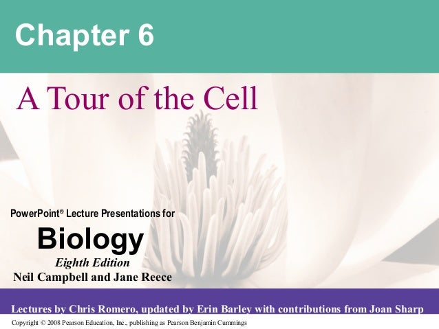 Chapter 6 A Tour of the CellPowerPoint® Lecture Presentations for        Biology       Eighth EditionNeil Campbell and Jan...