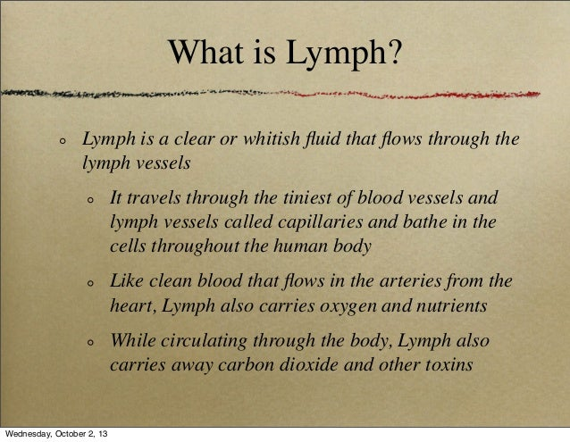 chapter 6: lymph, lymph node and lymphocyte, Human Body