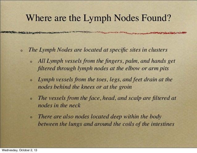 Chapter 6: Lymph, Lymph Node and Lymphocyte