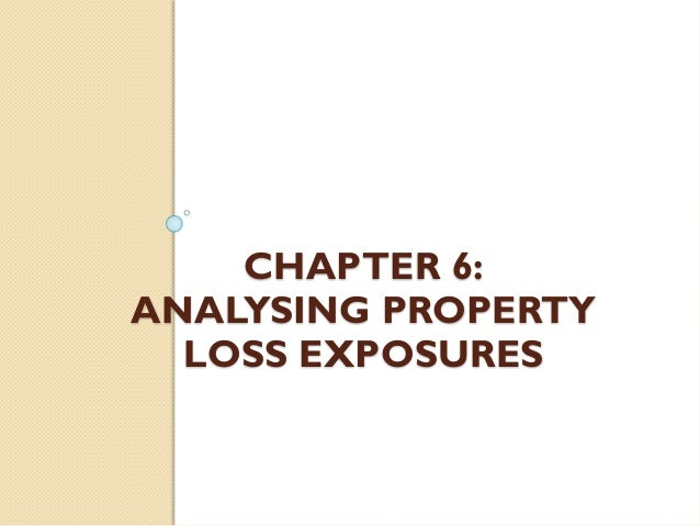 CHAPTER 6: ANALYSING PROPERTY LOSS EXPOSURES