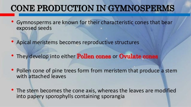 LIFE CYCLE AND REPRODUCTIVE STRUCTURES