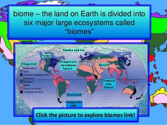 Chapter 6, Lesson 5 - Biomes