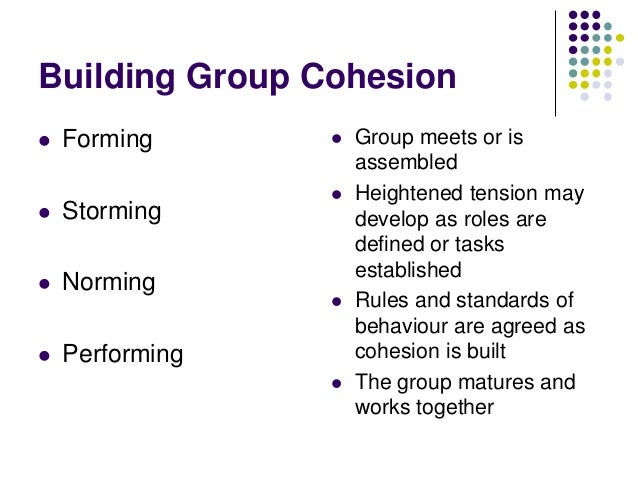 Factors affecting the development of Cohesion   Environmental Factors          Personal Factors Leadership Factors  ...